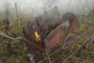 Charette artisanale pour brûler le bois de vigne